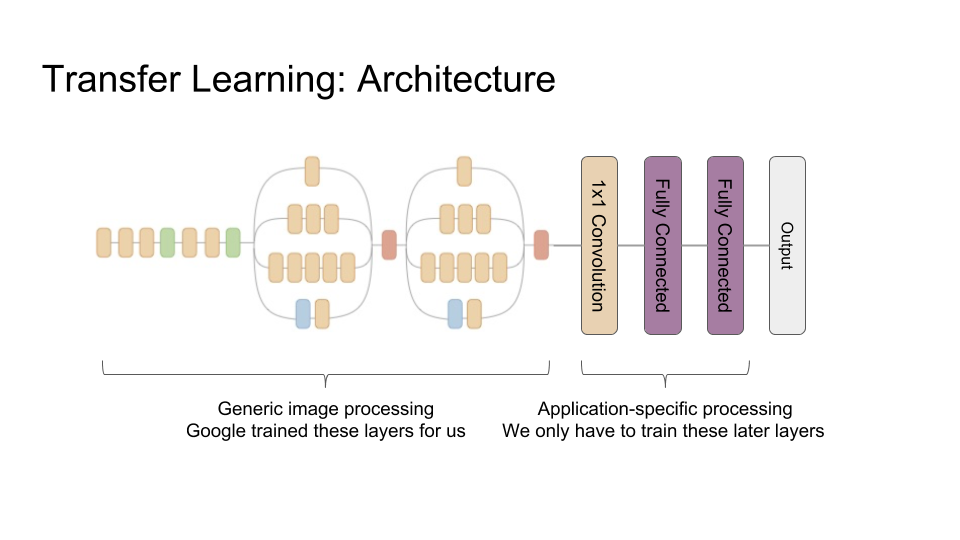 The first 44 layers of the inception network, which provide generic image processing, followed by a convolution and two fully connected layers, which we will train for our task