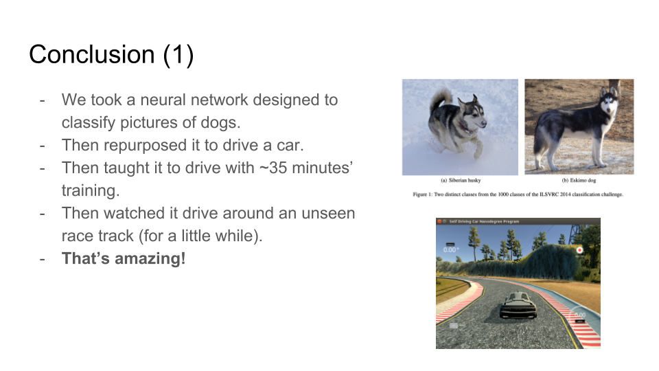 Conclusions as in the text, plus pictures of the dogs and the simulator.